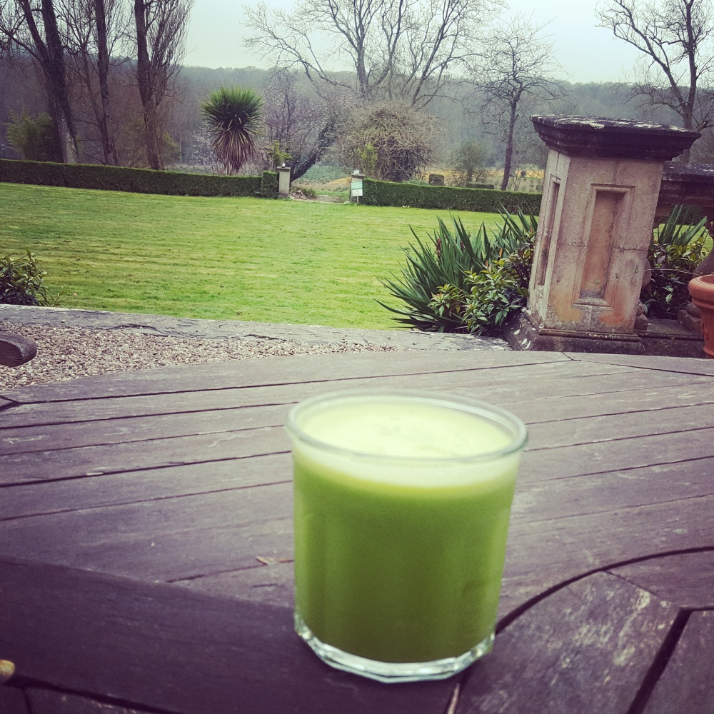 Green juice with green fields and trees in the background