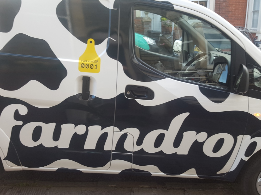 cow print electric vans
